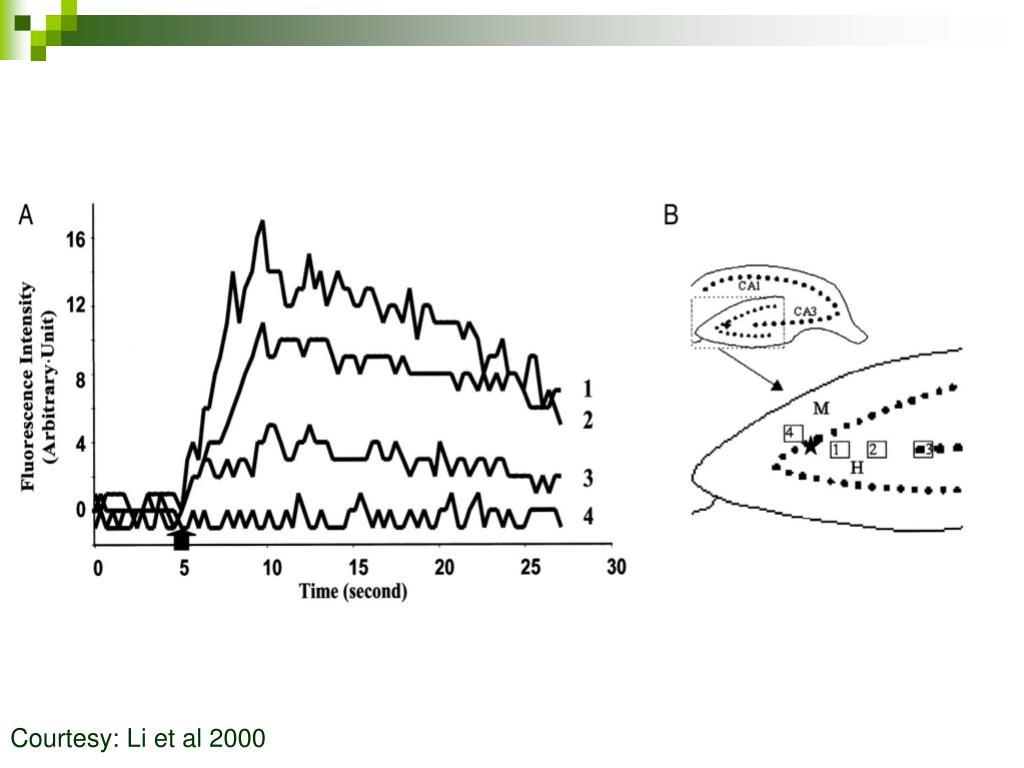 Courtesy: Li et al 2000