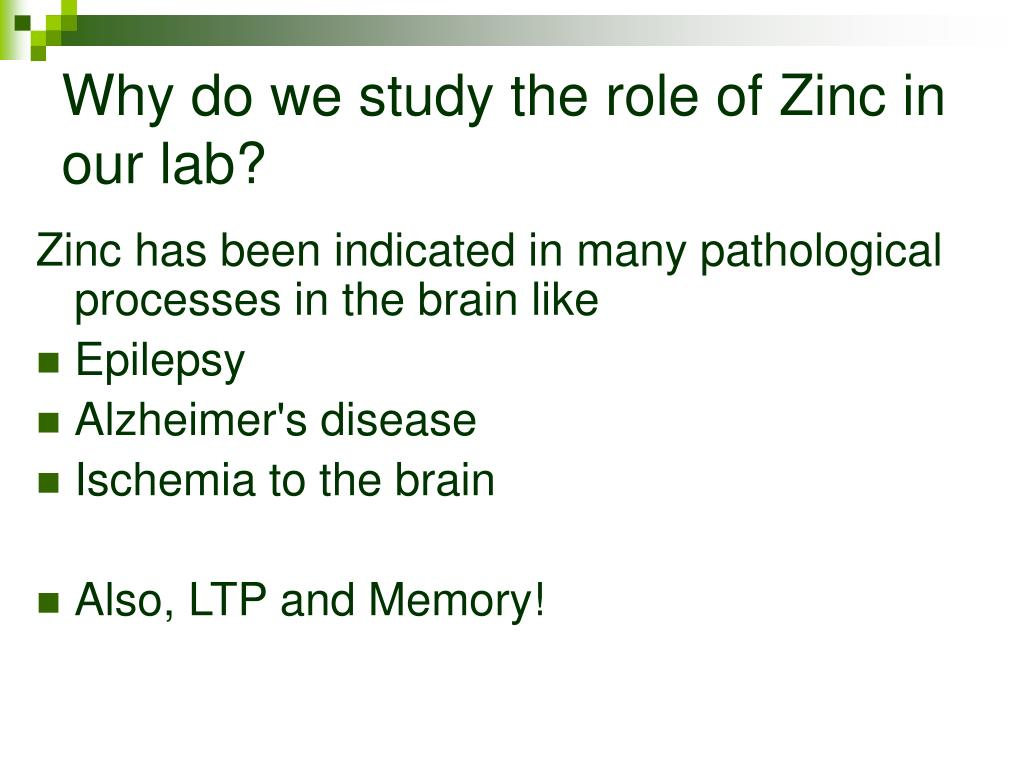 Why do we study the role of Zinc in our lab?
