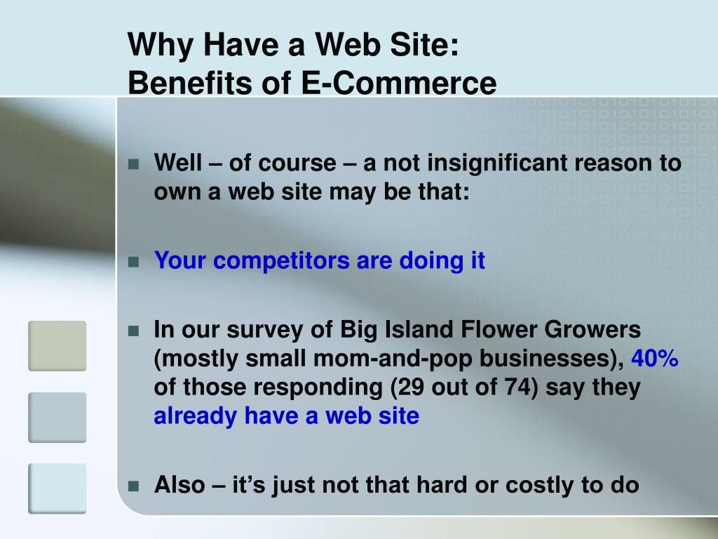 Why Have a Web Site: