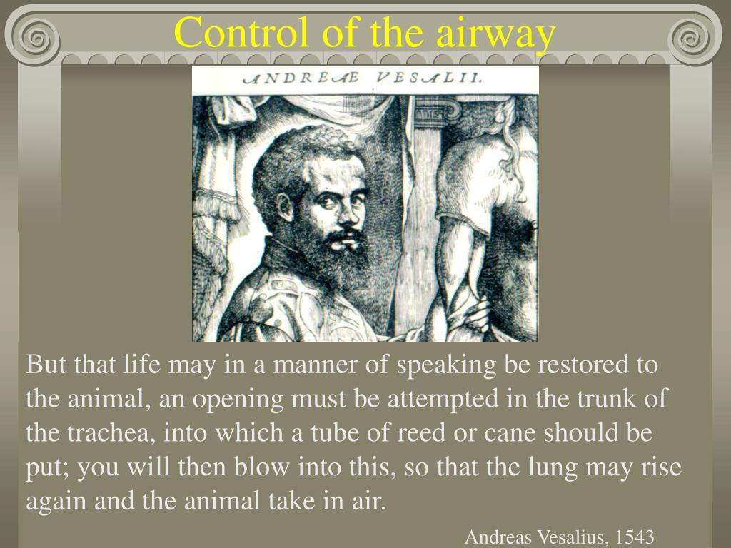 Control of the airway