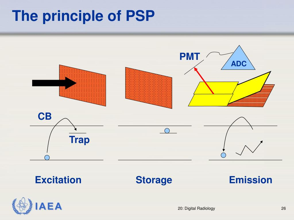 The principle of PSP