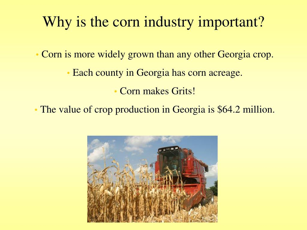 Why is the corn industry important?