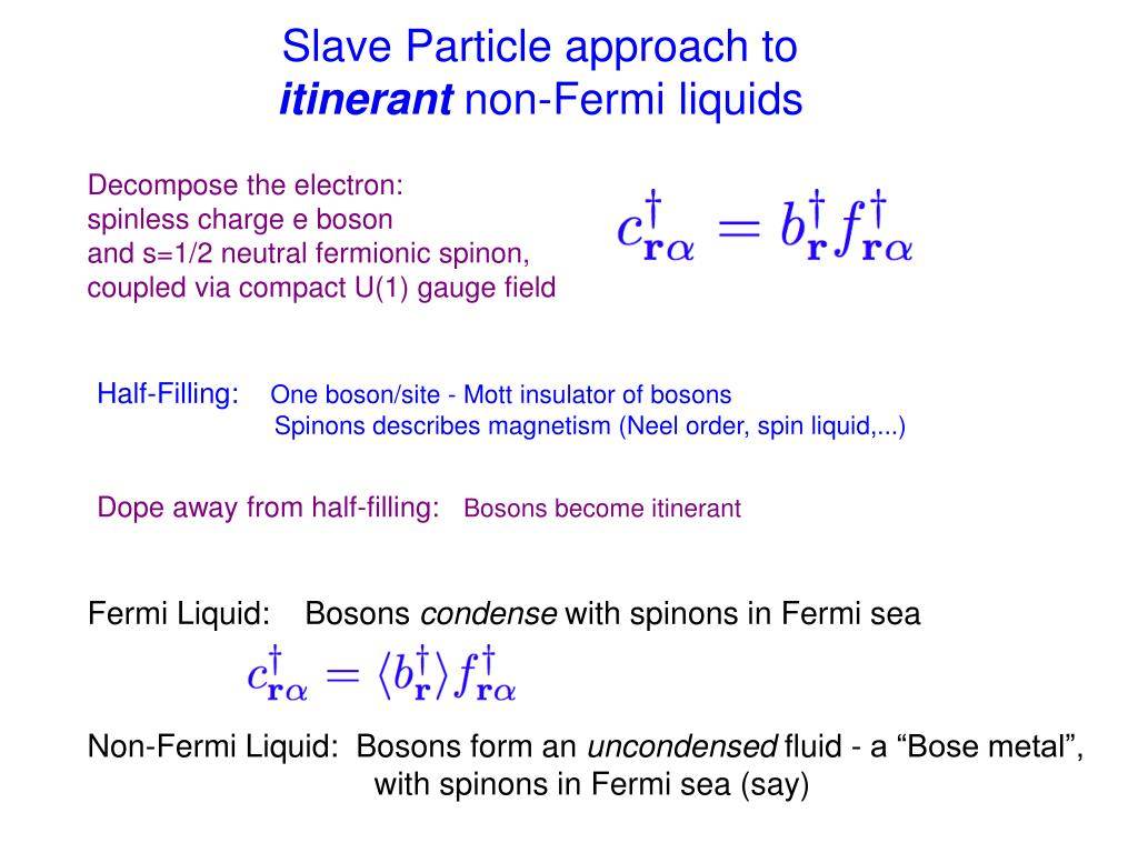 Slave Particle approach to