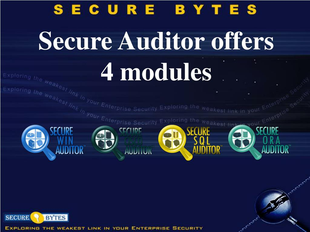 Secure Auditor offers