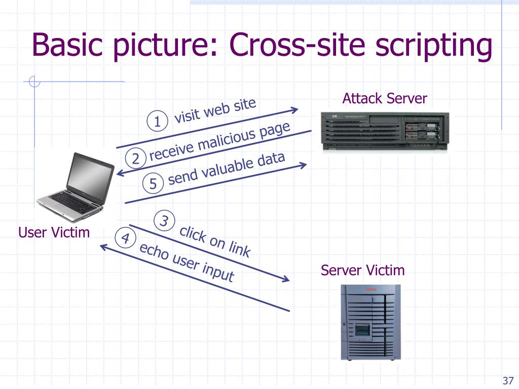 Basic picture: Cross-site scripting