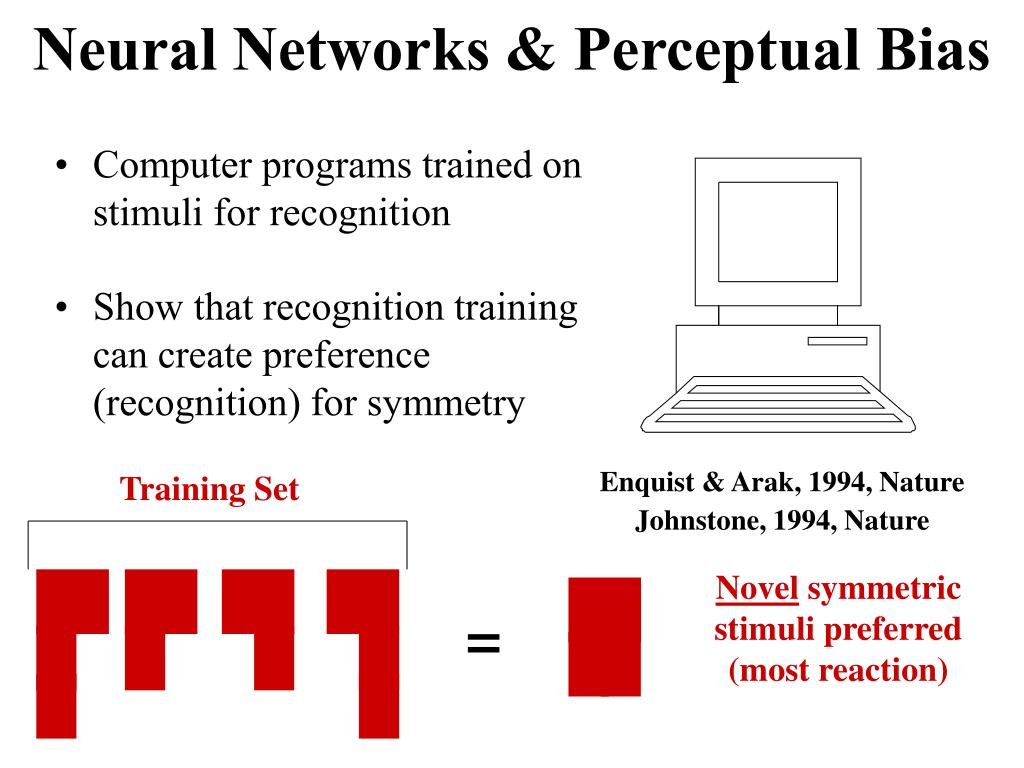 Neural Networks & Perceptual Bias