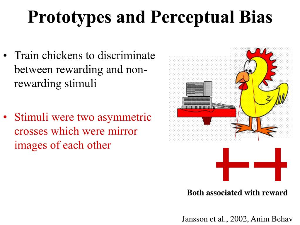 Prototypes and Perceptual Bias
