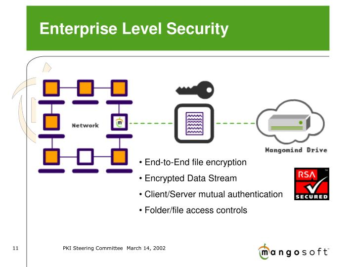 Enterprise Level Security