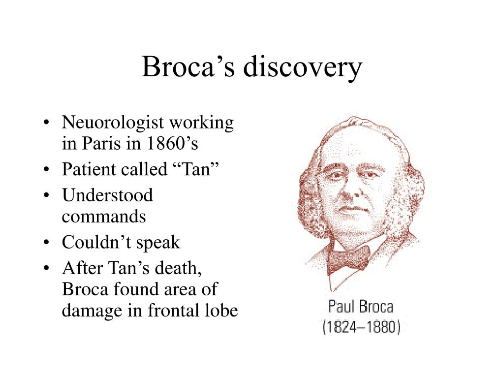 Broca's discovery