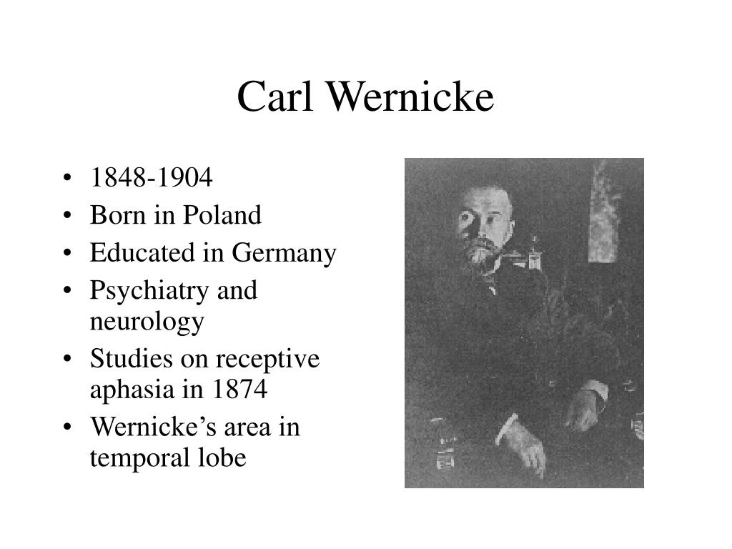 Carl Wernicke