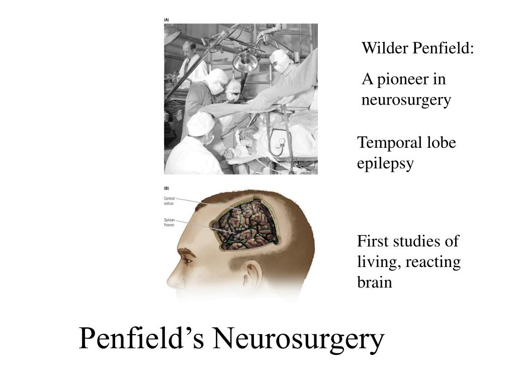 Penfield's Neurosurgery