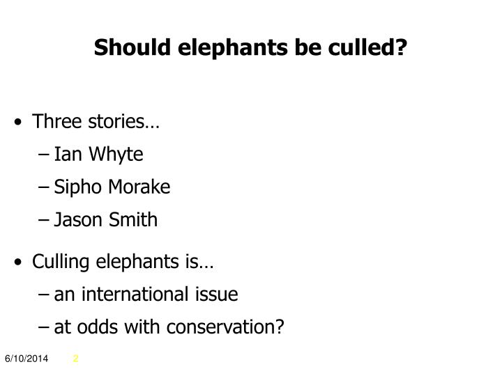 Should elephants be culled?