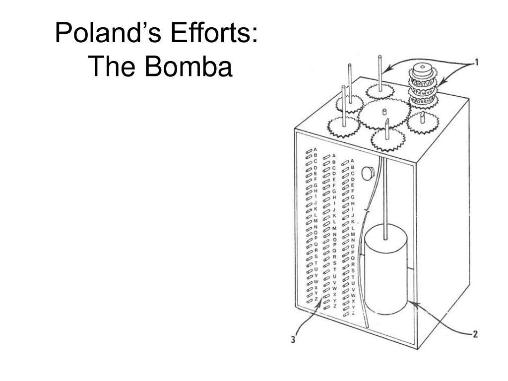 Poland's Efforts: