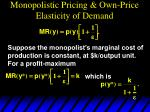 monopolistic pricing own price elasticity of demand16