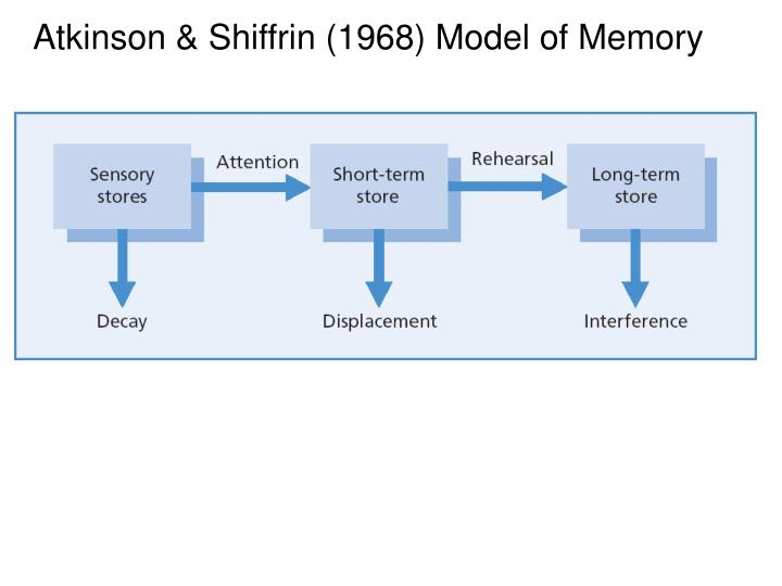 Atkinson shiffrin 1968 model of memory