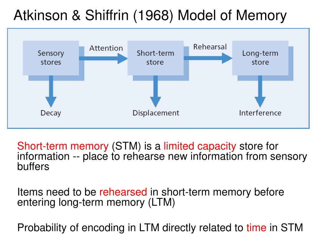 Atkinson & Shiffrin (1968) Model of Memory