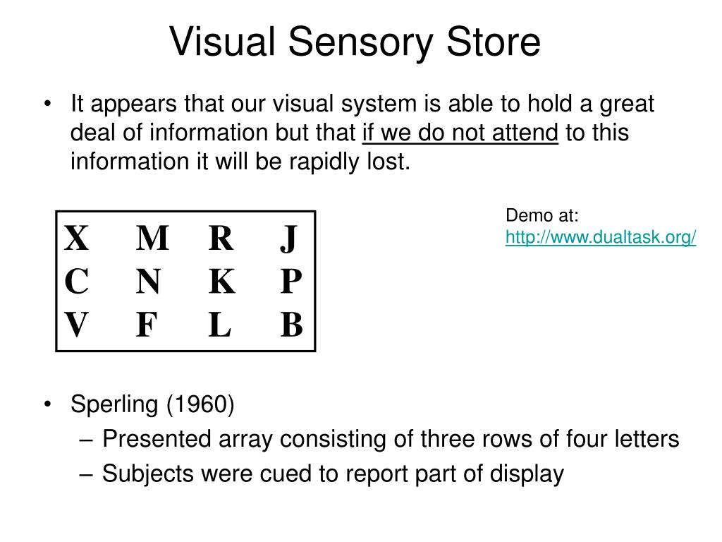 Visual Sensory Store