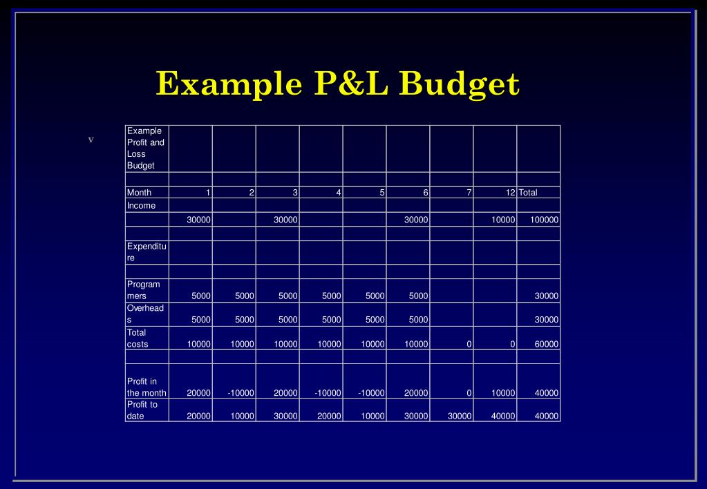 Example P&L Budget
