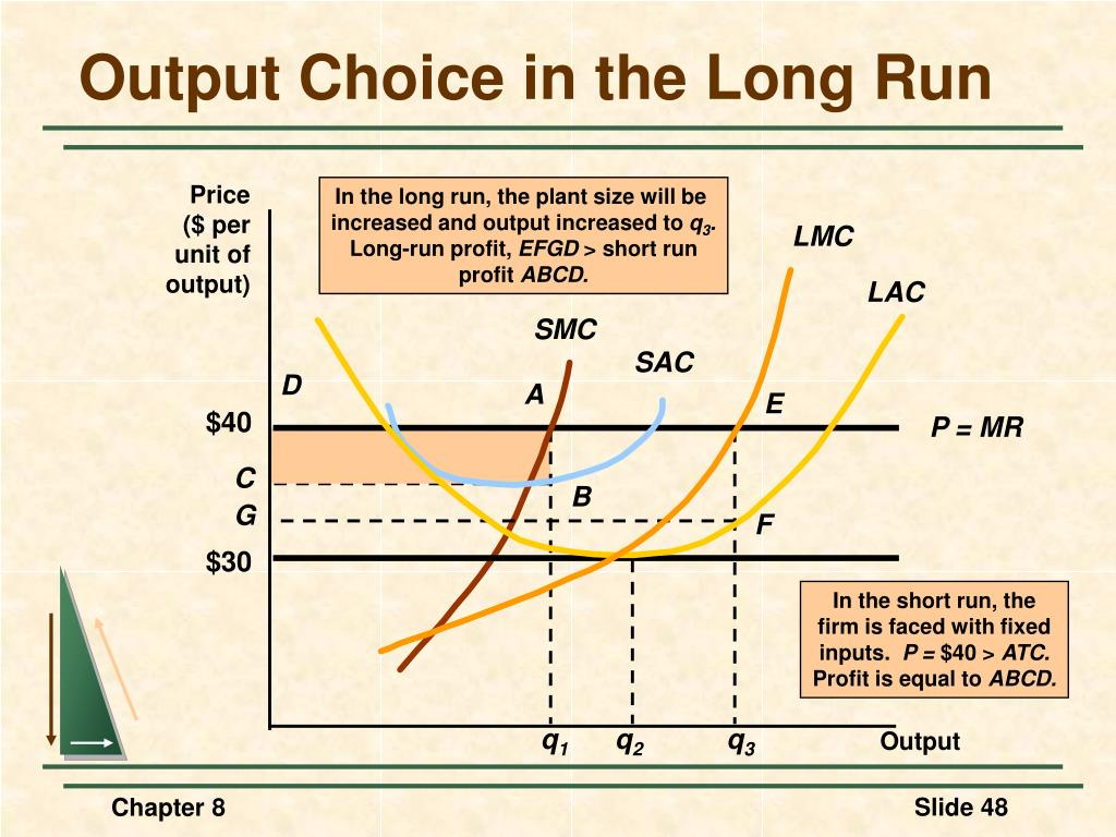 In the long run, the plant size will be