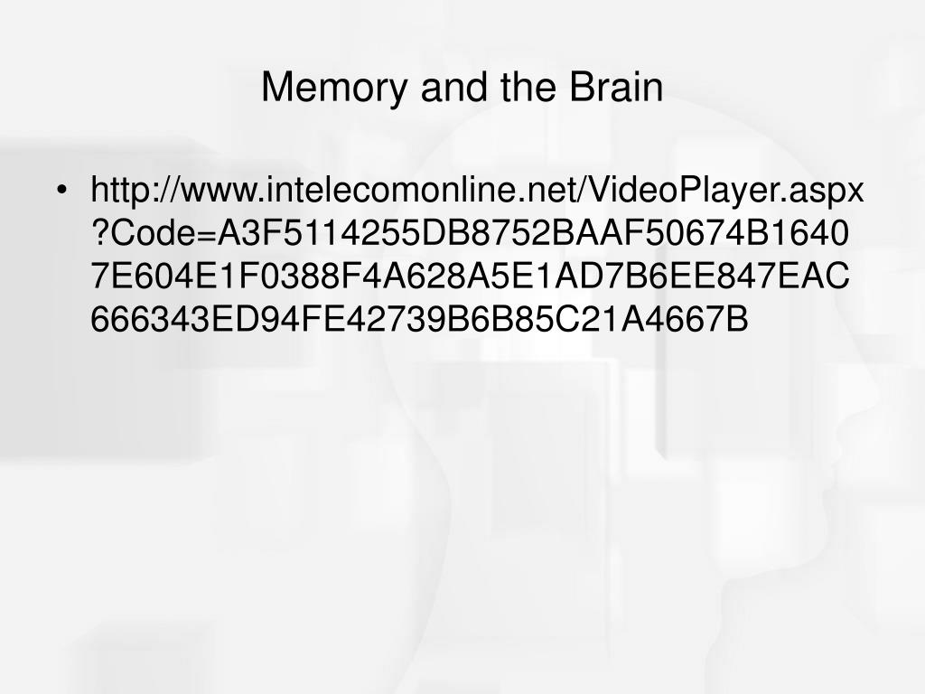 Memory and the Brain