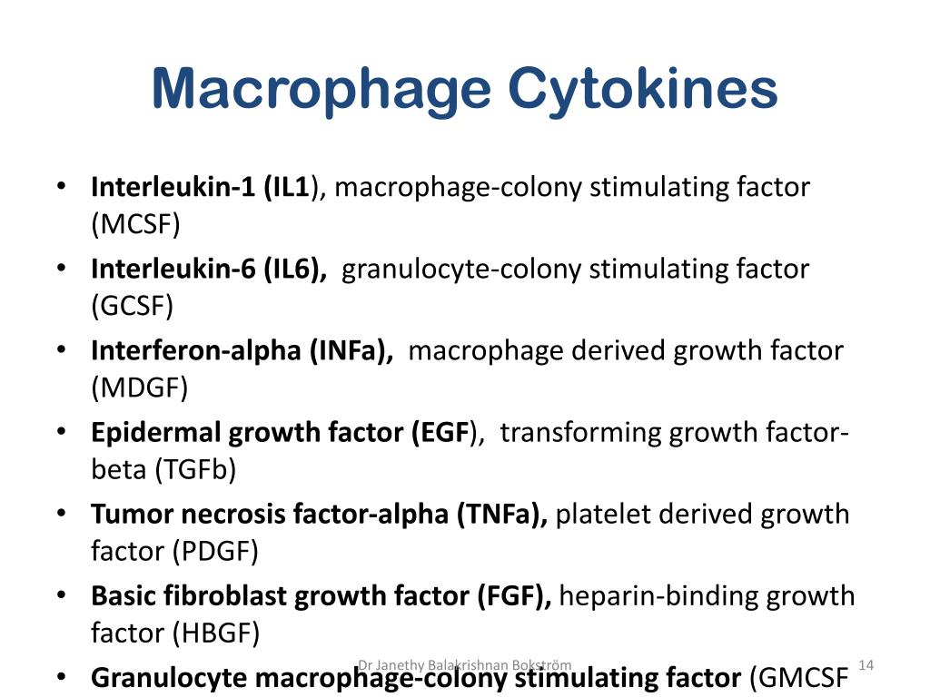 Macrophage Cytokines