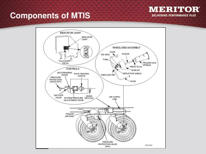 Components of mtis l.jpg