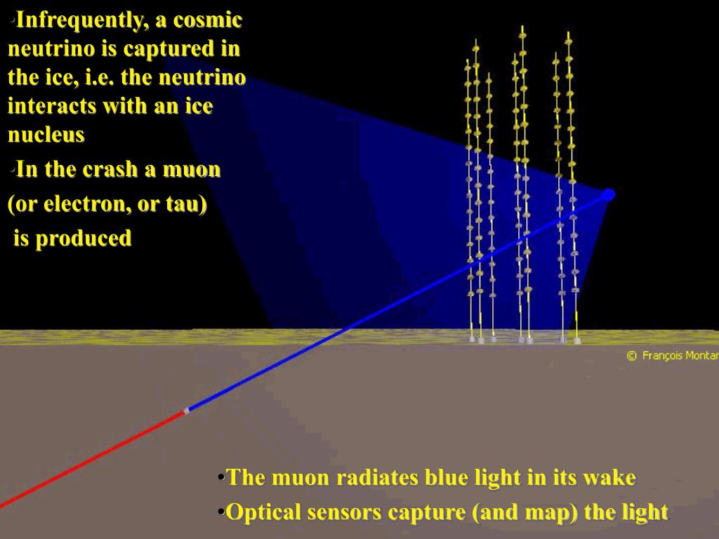 Infrequently, a cosmic neutrino is captured in the ice, i.e. the neutrino interacts with an ice nucleus