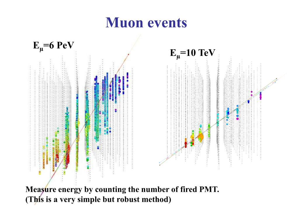 Muon events