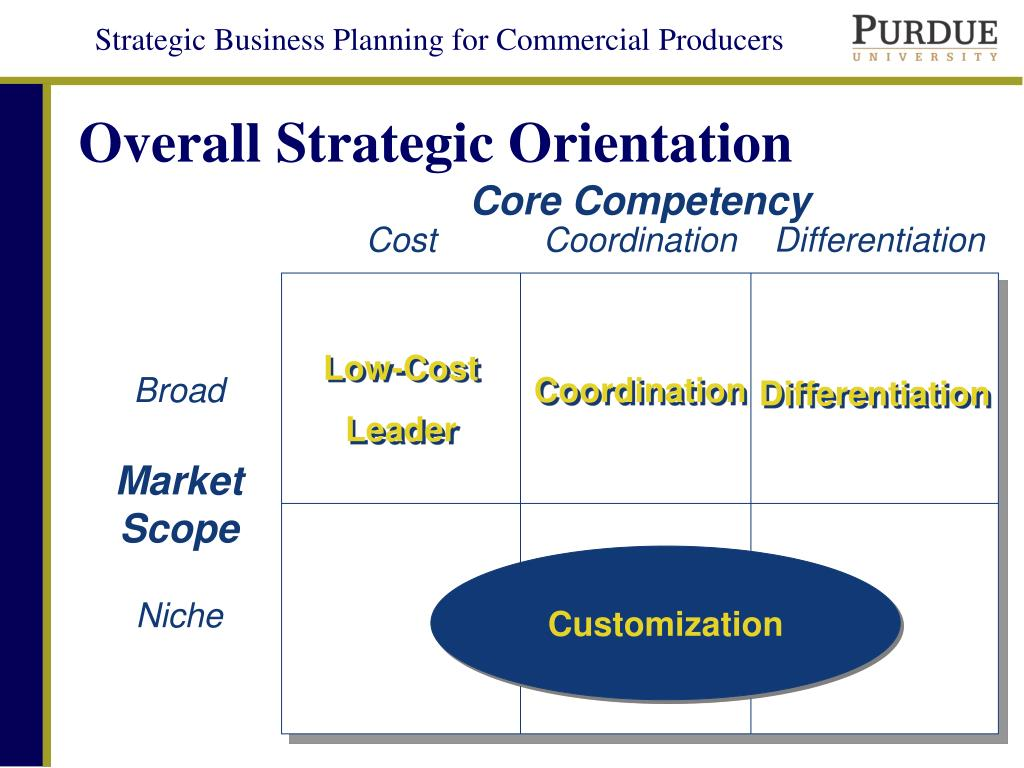 niche cost leader competencies and advantage Strategic management and competitive advantage what is cost leadership 104 sources of cost advantages 104 leveraging new core competencies in additional.
