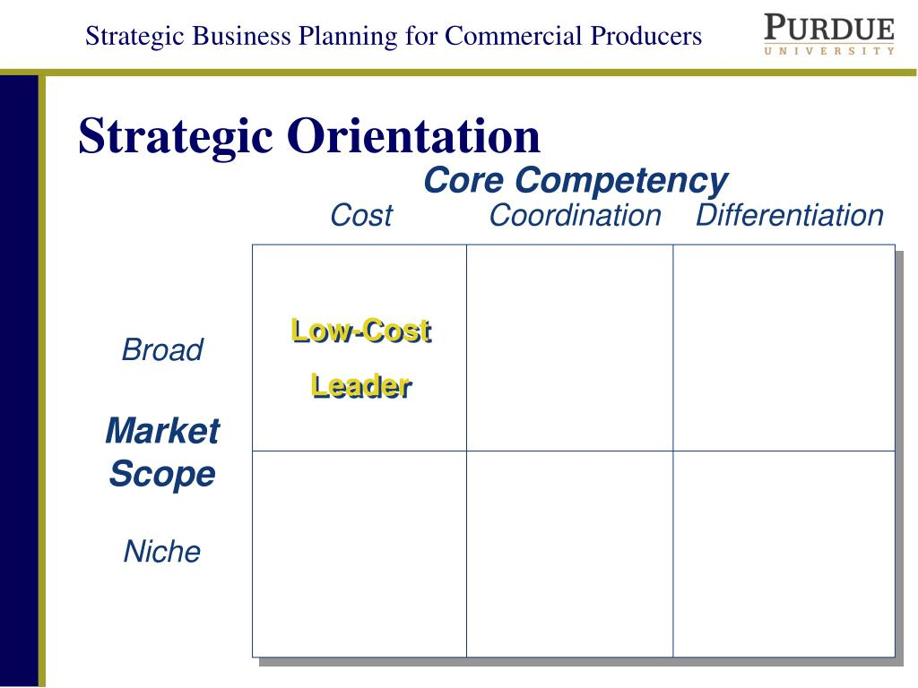 niche cost leader competencies and advantage Once your business is entrenched as a leader in providing to a niche market,  cost leadership & competitive advantage  advantages of the cost-leader strategy.