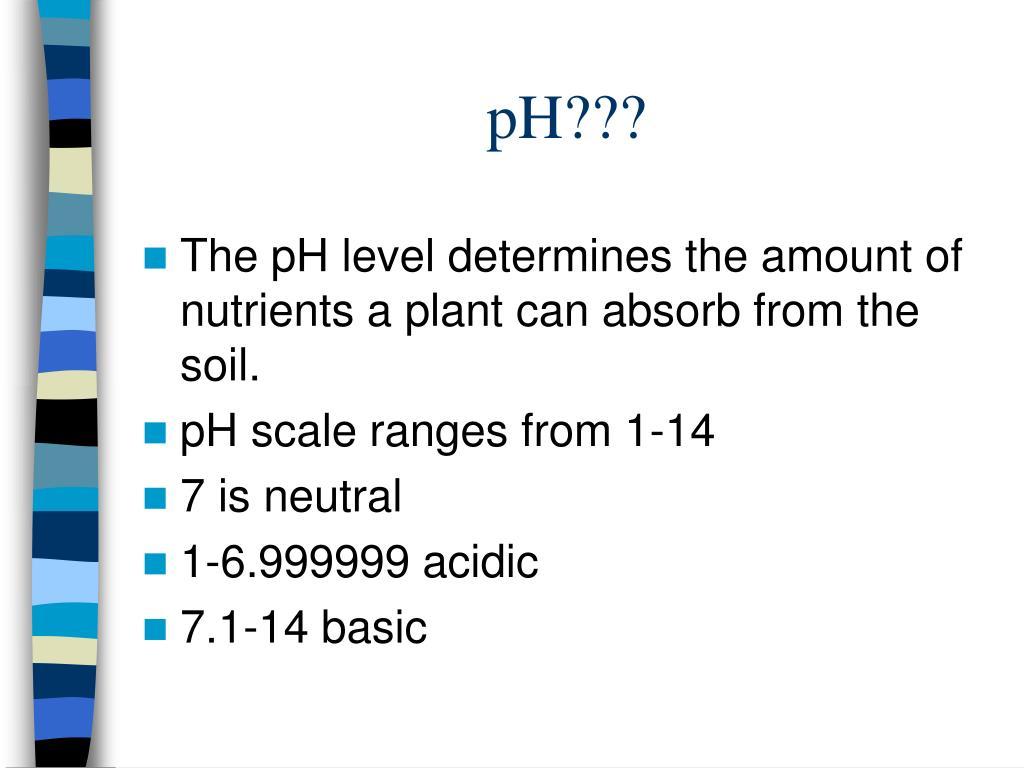 pH???