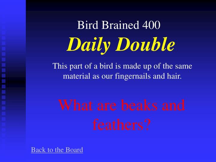Bird Brained 400