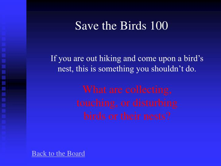 Save the Birds 100