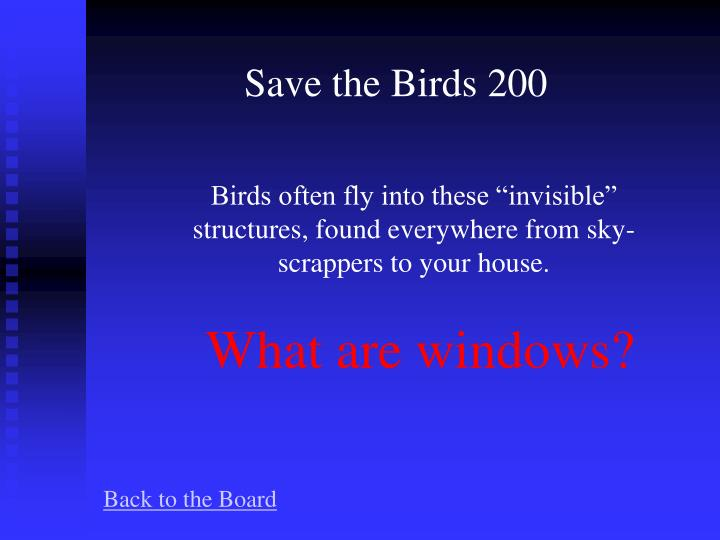 Save the Birds 200
