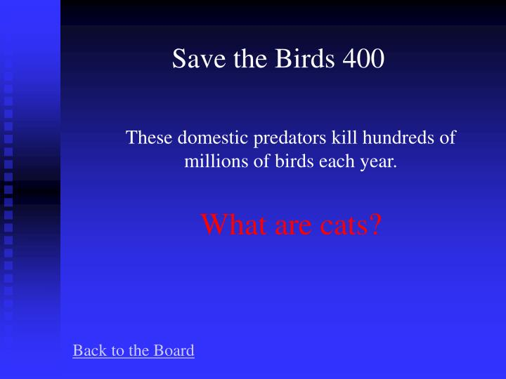 Save the Birds 400