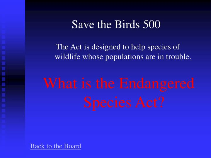 Save the Birds 500