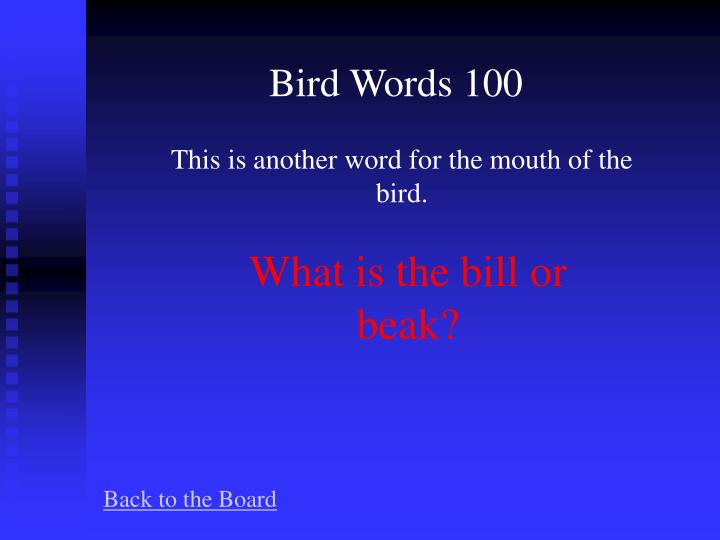 Bird Words 100