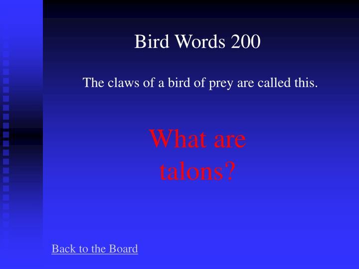 Bird Words 200