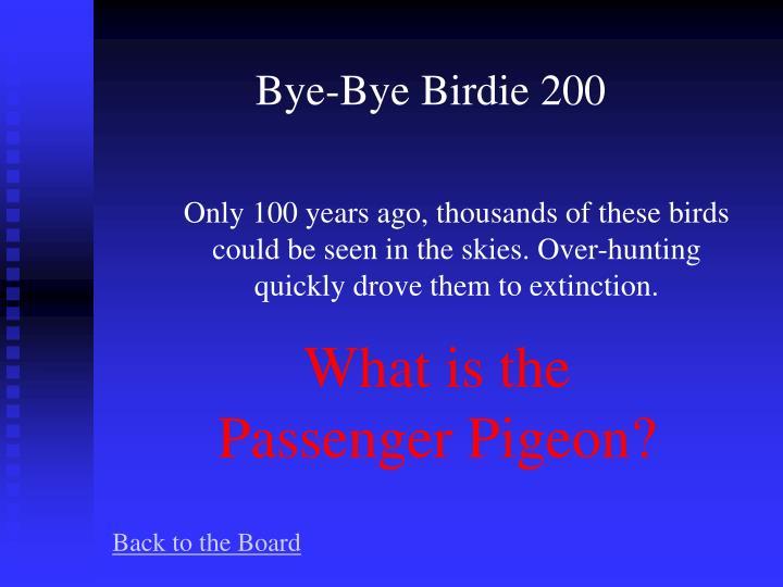 Bye-Bye Birdie 200