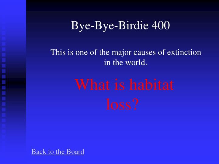 Bye-Bye-Birdie 400