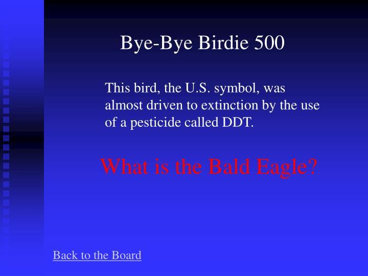 Bye-Bye Birdie 500