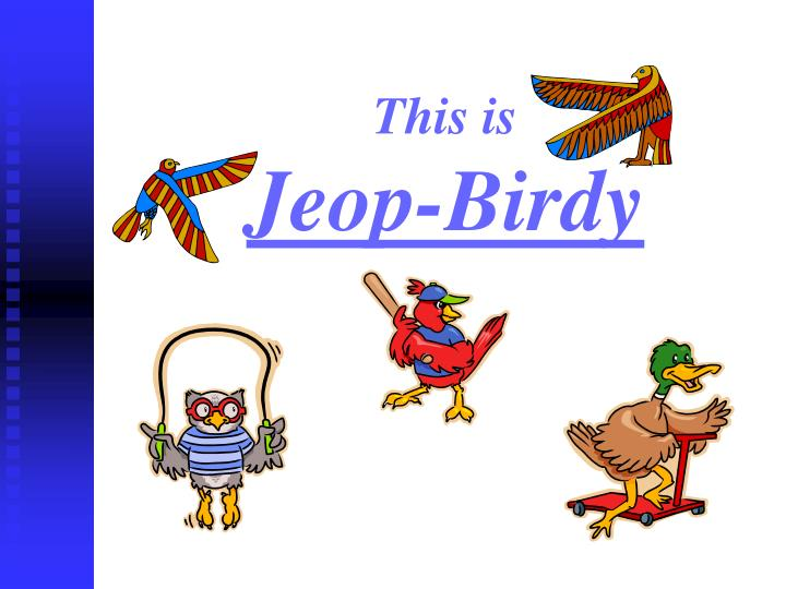 This is jeop birdy