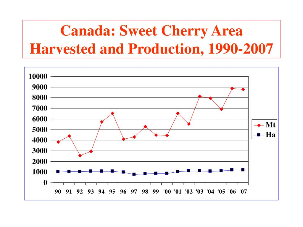 Canada: Sweet Cherry Area Harvested and Production, 1990-2007