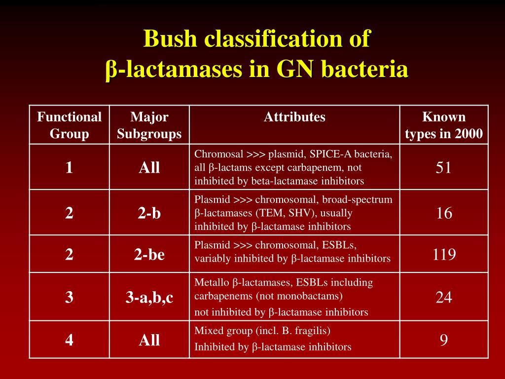 Bush classification of