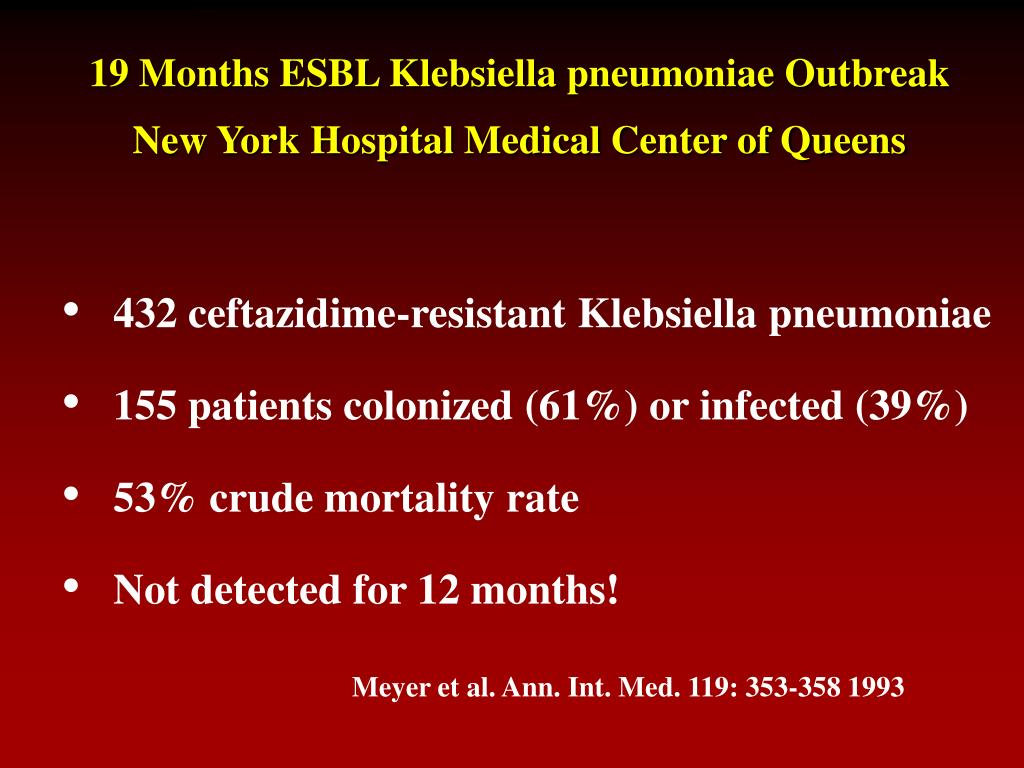 19 Months ESBL Klebsiella pneumoniae Outbreak New York Hospital Medical Center of Queens