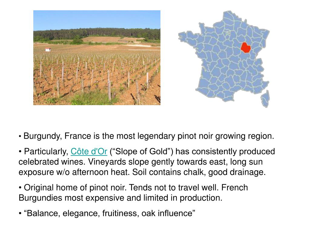 Burgundy, France is the most legendary pinot noir growing region.