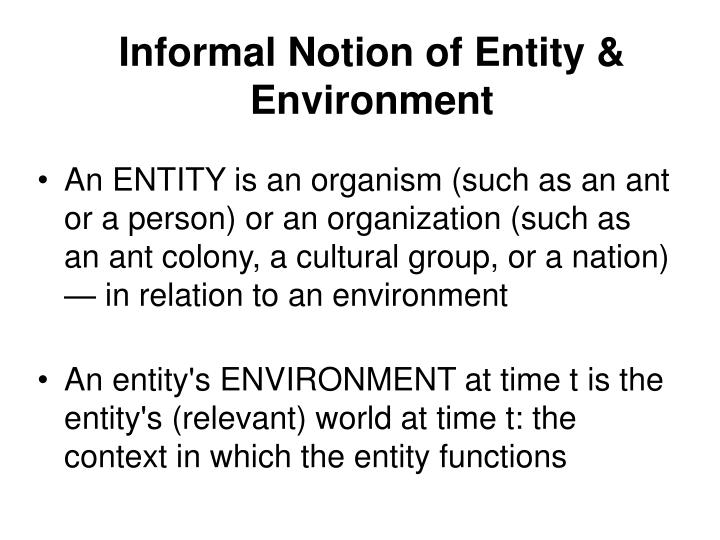 Informal Notion of Entity & Environment
