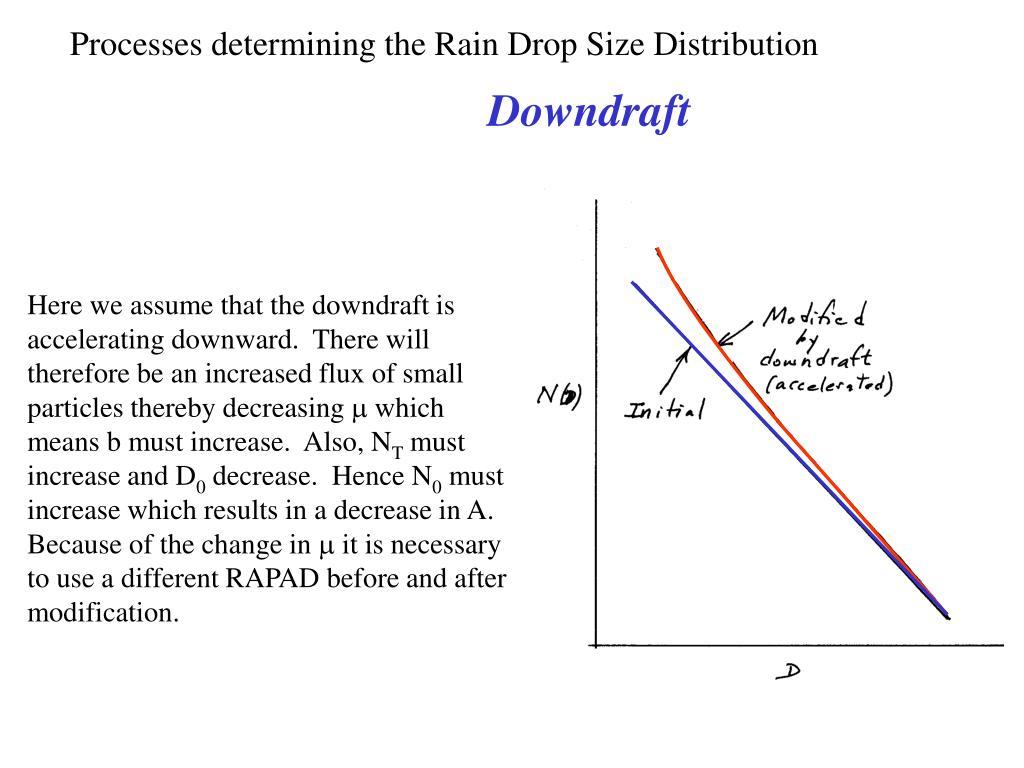 Processes determining the Rain Drop Size Distribution