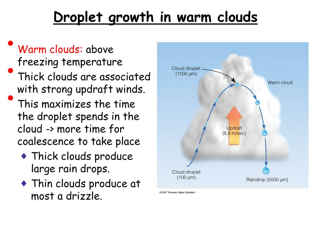 Droplet growth in warm clouds