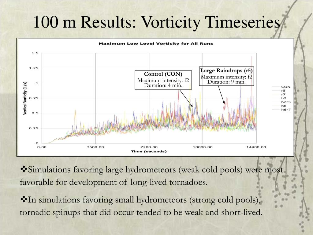 100 m Results: Vorticity Timeseries